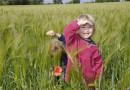 Sfaturi pentru a-ti creste copilul cu un bun simt ecologic