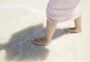Plimbarile pe plaja nu trebuie sa o afecteze ecologic